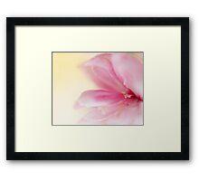 Spring Chloe Cherry Blossom Framed Print