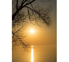 Framing the Golden Sun Photographic Print
