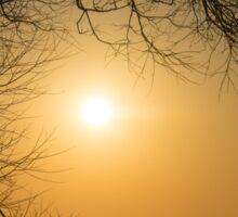 Framing the Golden Sun Sticker