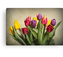 Colours Of Spring Canvas Print