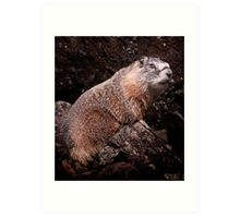 I'm The Nate Silver of Groundhogs Art Print