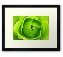 Bright Lime Green Rose Flower Framed Print