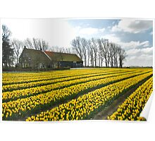 Spring on Flakkee 7 Poster