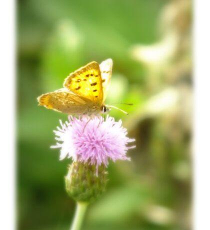 Getting Some Nectar Sticker