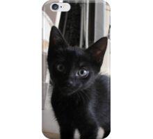 Black kitten iPhone Case/Skin