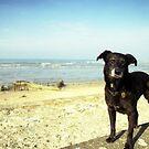 Shela at the beach by Michael Haslam