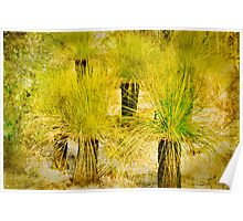 Textured Grass Trees Poster