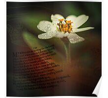 A White Sonnet Poster
