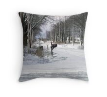 Will the mail arrive? Throw Pillow