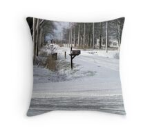Will the Mail Arrive II? Throw Pillow