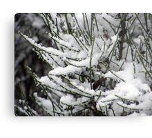 Fantasy Snowfall Metal Print