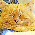 """I'm so sleepy"" by Malcolm Chant"