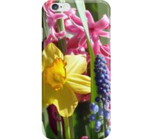 Blossoms in April iPhone Case/Skin