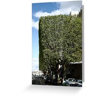 Topiary? Greeting Card