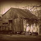 Old Shed  by Mechelep