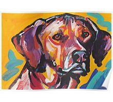 Rhodesian Ridgeback Bright colorful pop dog art Poster
