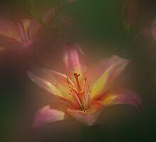 Bursting with Joy by enchantedImages