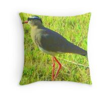 Crowned plover Throw Pillow