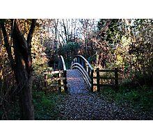 Old bridge in park Photographic Print