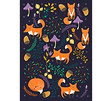 Foxes in magic forest Photographic Print