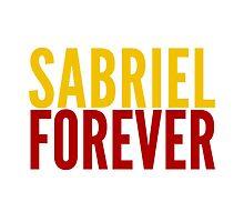 Ship Loyalty - Sabriel by @I_am_the_Impala by minionmktplace
