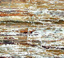 Arctic Tundra Landscape by Kathie Nichols