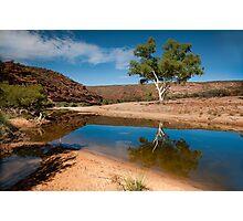 One Tree - Ross Graham Gorge Kalbarri Photographic Print