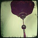 Chinese Lantern by Marita