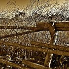 Old Fence  by Scott Johnson