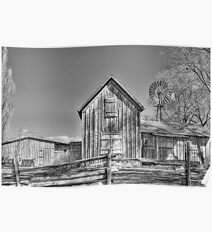 Pioneer Homestead Poster