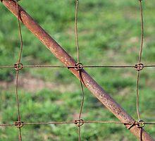 Rusty Gate by Bryan Kidd