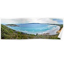 Mutton Bird Beach Panorama Poster
