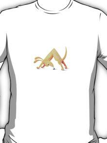 Doga, Downdog T-Shirt