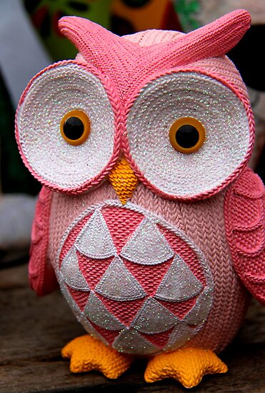 owl at leichhardt by Janie. D