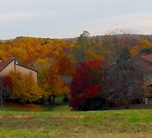 Autumn comes to Pike Creek by nastruck