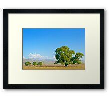 Three small and one bigger Framed Print