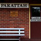 Waiting - Parattah, Tasmania by clickedbynic