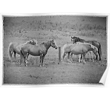 The Mares Poster
