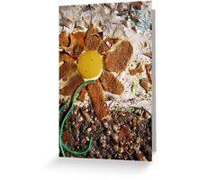 SPRING 1 - SUNSHINE BRINGS SEED INTO LIFE  Greeting Card