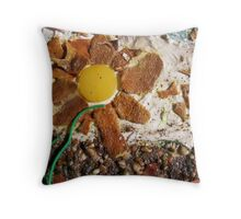 SPRING 1 - SUNSHINE BRINGS SEED INTO LIFE  Throw Pillow