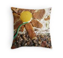 SPRING 8 - SUNSHINE AND RAIN  Throw Pillow