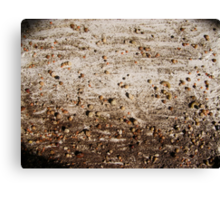 SPRNG - 9 SEED IN THE GROUND Canvas Print