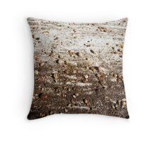 SPRING 10 - EARTH Throw Pillow