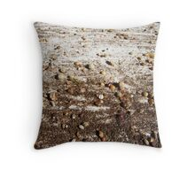 SPRING 11 - SOIL Throw Pillow