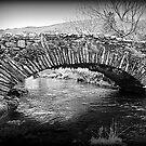 Lakeland Packhorse Bridge by Lou Wilson