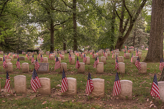 Tribute to Our Veterans by Kim McClain Gregal
