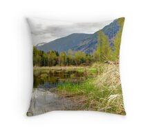Cheam Wetlands 2 Throw Pillow