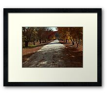 The road to the end Framed Print