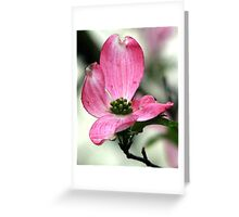 The Vivacious Pink Dogwood Greeting Card