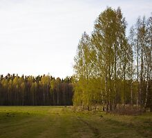 Latvian countryside by Anete Bauere